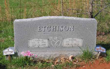 ETCHISON, CHARLIE - Lawrence County, Arkansas | CHARLIE ETCHISON - Arkansas Gravestone Photos