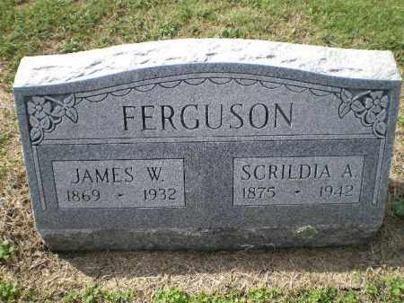 FERGUSON, JAMES W. - Lawrence County, Arkansas | JAMES W. FERGUSON - Arkansas Gravestone Photos