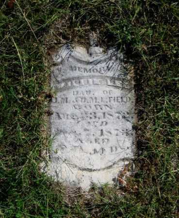 FIELD, WILLIE LEE - Lawrence County, Arkansas | WILLIE LEE FIELD - Arkansas Gravestone Photos