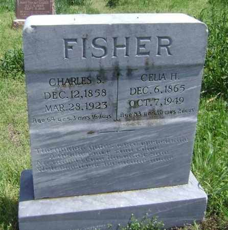 FISHER, CHARLES S. - Lawrence County, Arkansas | CHARLES S. FISHER - Arkansas Gravestone Photos