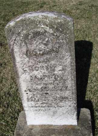 FLIPPO, ANDREW JACKSON - Lawrence County, Arkansas | ANDREW JACKSON FLIPPO - Arkansas Gravestone Photos