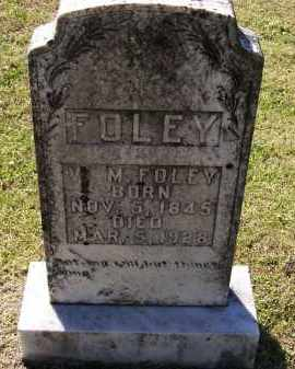 "FOLEY (VETERAN CSA), WILLIAM M. ""W. M."" - Lawrence County, Arkansas 