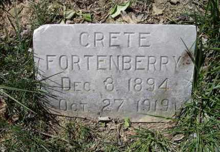 FORTENBERRY, CRETE OPHELIA - Lawrence County, Arkansas | CRETE OPHELIA FORTENBERRY - Arkansas Gravestone Photos