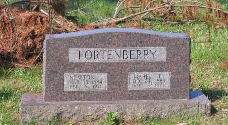 FORTENBERRY, NEWTON JACKSON - Lawrence County, Arkansas | NEWTON JACKSON FORTENBERRY - Arkansas Gravestone Photos