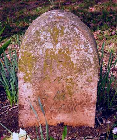 FRANKS, SARAH M. - Lawrence County, Arkansas | SARAH M. FRANKS - Arkansas Gravestone Photos