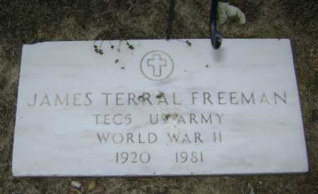 FREEMAN  (VETERAN WWII), JAMES TERRAL - Lawrence County, Arkansas | JAMES TERRAL FREEMAN  (VETERAN WWII) - Arkansas Gravestone Photos