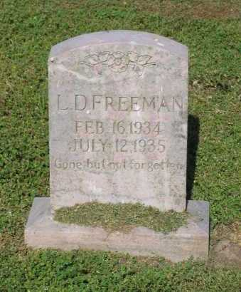 FREEMAN, L. D. - Lawrence County, Arkansas | L. D. FREEMAN - Arkansas Gravestone Photos