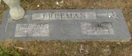 FREEMAN, WILLIAM THEODORE - Lawrence County, Arkansas | WILLIAM THEODORE FREEMAN - Arkansas Gravestone Photos