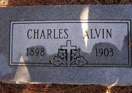 FRIZZELL, CHARLES ALVIN - Lawrence County, Arkansas | CHARLES ALVIN FRIZZELL - Arkansas Gravestone Photos