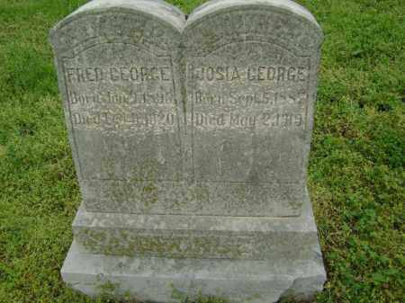 GEORGE, FRED - Lawrence County, Arkansas | FRED GEORGE - Arkansas Gravestone Photos