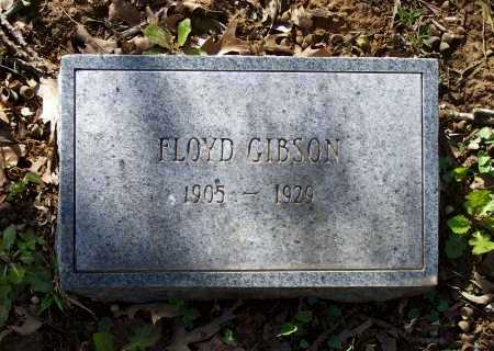 GIBSON, FLOYD - Lawrence County, Arkansas | FLOYD GIBSON - Arkansas Gravestone Photos