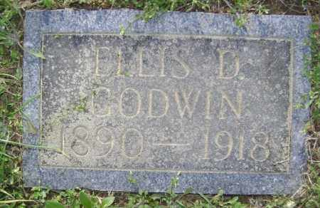 GODWIN, ELLIS D. - Lawrence County, Arkansas | ELLIS D. GODWIN - Arkansas Gravestone Photos