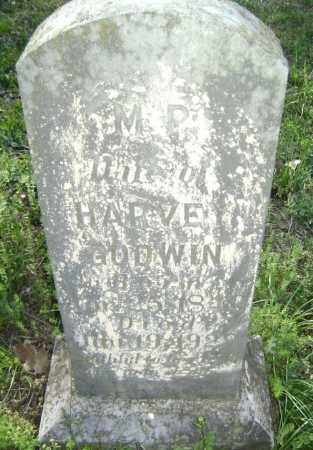 GODWIN, MARGARET  PERMILLA - Lawrence County, Arkansas | MARGARET  PERMILLA GODWIN - Arkansas Gravestone Photos