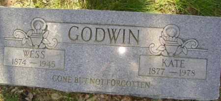 "GODWIN, NANCY CATHERINE ""KATE"" - Lawrence County, Arkansas 