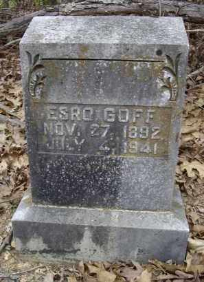 "GOFF, WASHINGTON EZRA ""ESRO"" - Lawrence County, Arkansas 
