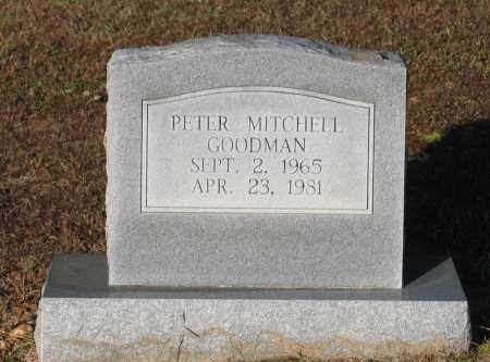 GOODMAN, PETER MITCHELL - Lawrence County, Arkansas | PETER MITCHELL GOODMAN - Arkansas Gravestone Photos