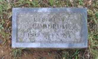 GOODRUM, HERBERT W. - Lawrence County, Arkansas | HERBERT W. GOODRUM - Arkansas Gravestone Photos