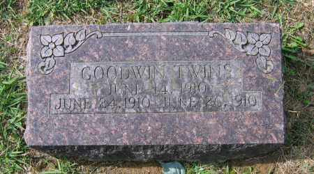 GOODWIN, INFANT TWIN - Lawrence County, Arkansas | INFANT TWIN GOODWIN - Arkansas Gravestone Photos