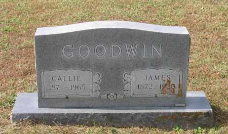 GOODWIN, CALLIE - Lawrence County, Arkansas | CALLIE GOODWIN - Arkansas Gravestone Photos