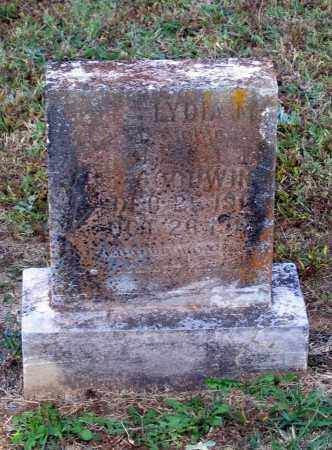 GOODWIN, LYDIA - Lawrence County, Arkansas | LYDIA GOODWIN - Arkansas Gravestone Photos