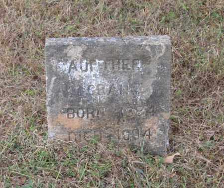 GRANT, ARTHUR - Lawrence County, Arkansas   ARTHUR GRANT - Arkansas Gravestone Photos