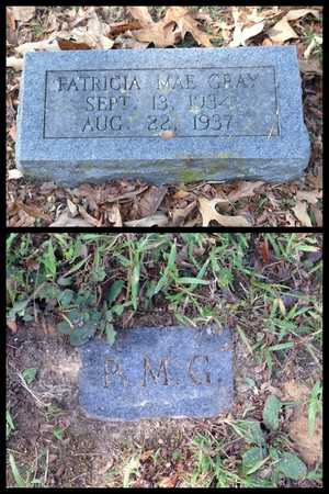 GRAY, PATRICIA MAE - Lawrence County, Arkansas | PATRICIA MAE GRAY - Arkansas Gravestone Photos