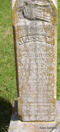 GROSS, JESSE W. - Lawrence County, Arkansas | JESSE W. GROSS - Arkansas Gravestone Photos