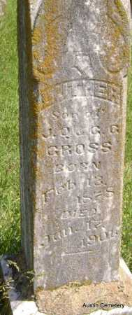 GROSS, LUTHER - Lawrence County, Arkansas | LUTHER GROSS - Arkansas Gravestone Photos