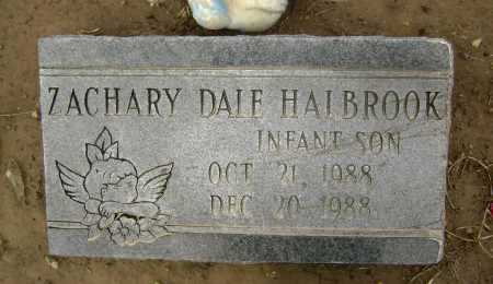 HALBROOK, ZACHARY DALE - Lawrence County, Arkansas | ZACHARY DALE HALBROOK - Arkansas Gravestone Photos