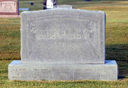 HALEY FAMILY STONE,  - Lawrence County, Arkansas |  HALEY FAMILY STONE - Arkansas Gravestone Photos