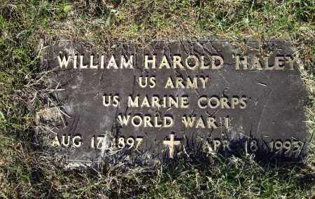 HALEY (VETERAN WWI), WILLIAM HAROLD - Lawrence County, Arkansas | WILLIAM HAROLD HALEY (VETERAN WWI) - Arkansas Gravestone Photos