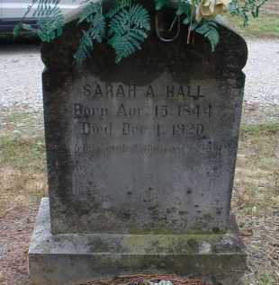 SKAGGS, SARAH A. - Lawrence County, Arkansas | SARAH A. SKAGGS - Arkansas Gravestone Photos