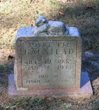 HALSTEAD, JOYCE LEE - Lawrence County, Arkansas | JOYCE LEE HALSTEAD - Arkansas Gravestone Photos