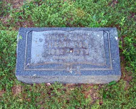 HAMILTON, HAPPY JACK - Lawrence County, Arkansas | HAPPY JACK HAMILTON - Arkansas Gravestone Photos