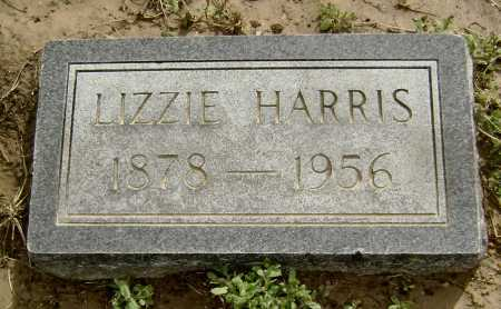 HARRIS, LIZZIE - Lawrence County, Arkansas | LIZZIE HARRIS - Arkansas Gravestone Photos