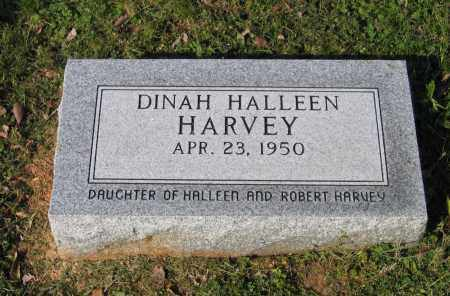 HARVEY, DINAH HALLEEN - Lawrence County, Arkansas | DINAH HALLEEN HARVEY - Arkansas Gravestone Photos
