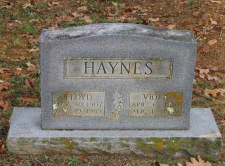 HAYNES, JAMES FLOYD - Lawrence County, Arkansas | JAMES FLOYD HAYNES - Arkansas Gravestone Photos