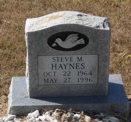 HAYNES, STEVE M. - Lawrence County, Arkansas | STEVE M. HAYNES - Arkansas Gravestone Photos