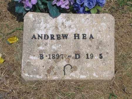 HEAD, ANDREW - Lawrence County, Arkansas | ANDREW HEAD - Arkansas Gravestone Photos