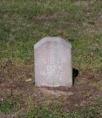 "HELMS, THOMAS EPHRAM ""T. E."" - Lawrence County, Arkansas   THOMAS EPHRAM ""T. E."" HELMS - Arkansas Gravestone Photos"