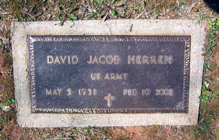 HERREN (VETERAN), DAVID JACOB - Lawrence County, Arkansas | DAVID JACOB HERREN (VETERAN) - Arkansas Gravestone Photos