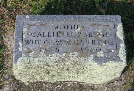 "HERRING, CALDONIA ELIZABETH ""CALLIE"" - Lawrence County, Arkansas | CALDONIA ELIZABETH ""CALLIE"" HERRING - Arkansas Gravestone Photos"