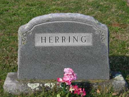 HERRING FAMILY STONE,  - Lawrence County, Arkansas |  HERRING FAMILY STONE - Arkansas Gravestone Photos
