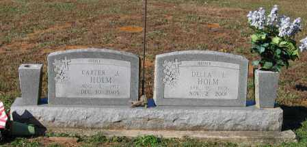HOLM, CARTER JAMES - Lawrence County, Arkansas | CARTER JAMES HOLM - Arkansas Gravestone Photos