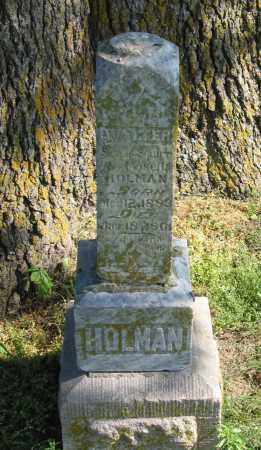 HOLMAN, WALTER - Lawrence County, Arkansas | WALTER HOLMAN - Arkansas Gravestone Photos