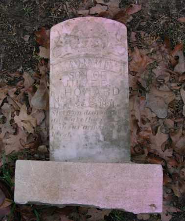 HOWARD, HARVEY - Lawrence County, Arkansas | HARVEY HOWARD - Arkansas Gravestone Photos