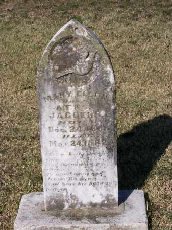 JAGGERS, MARY ELLEN - Lawrence County, Arkansas | MARY ELLEN JAGGERS - Arkansas Gravestone Photos