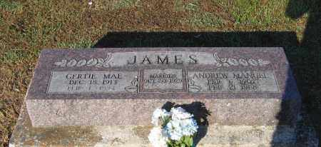 JAMES, THOMAS ANDREW MANUEL - Lawrence County, Arkansas | THOMAS ANDREW MANUEL JAMES - Arkansas Gravestone Photos