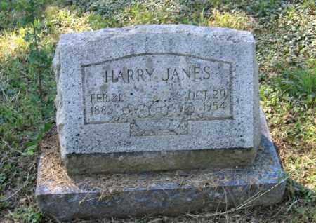 JANES, HARRY - Lawrence County, Arkansas | HARRY JANES - Arkansas Gravestone Photos