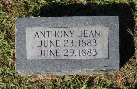 JEAN, ANTHONY - Lawrence County, Arkansas | ANTHONY JEAN - Arkansas Gravestone Photos
